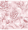 Peonies seamless pattern vector image vector image