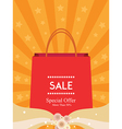 Sale Poster Background vector image