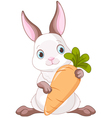 Bunny with Carrot vector image