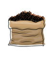bag with coffee beans colorful watercolor vector image