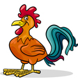 rooster farm animal cartoon vector image vector image