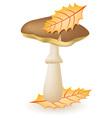 mushroom greasers vector image