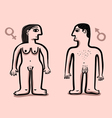 human nude couple vector image vector image