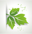 Fresh green leaf organic eco friendly symbol vector image