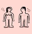 human nude couple vector image