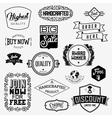 Set of vintage bagdes labels and stamps vector image