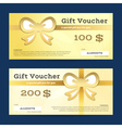 Gift voucher or gift certificate template vector image