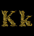 Decorated letter k vector image