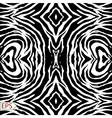 zebra background with black stripes vector image