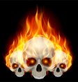 Three flaming skulls vector image