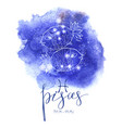 astrology sign pisces vector image