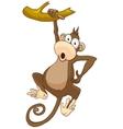 cartoon character monkey vector image