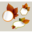 Set of autumn discount tickets labels stamps vector image vector image