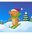 Cartoon bear skiing down a mountain slope vector image vector image