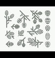Graphical linear set of firtree cones vector image