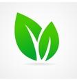 Eco icon green leaf vector image