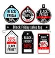 Black Friday Sales price vector image