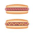 hot dog on white background vector image
