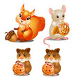 squirrel mouse and hamsters fairy animals vector image