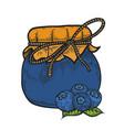 blueberry jam jar vector image