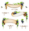set of vintage ribbons with grapes vector image