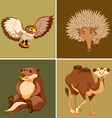 Different types of wild animal on brown background vector image