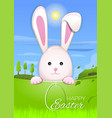 easter bunny in the background beautiful spring vector image