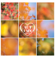 Set Autumn Backgrounds - 9 beautiful patterns vector image vector image