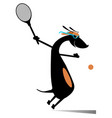 dog playing tennis isolated vector image