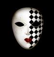 golden white mask vector image