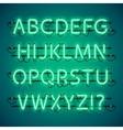 Glowing Neon Green Alphabet vector image