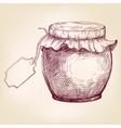 Jars of jam hand drawn llustration vector image