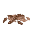 Dried Cardamom Pods on A White Background vector image