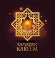 eight-pointed star ramadan kareem cover vector image