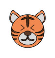 cute tiger drawing animal vector image