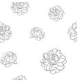 jasmine flower use in traditional mothers day vector image