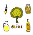 olive doodle icons set with tree and oil bottle vector image