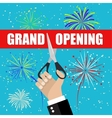Grand opening with fireworks vector image