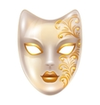 Carnival venetian masks decorated with golden vector image vector image