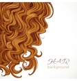 Background with curly brown hair vector image
