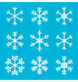 Snowflakes for winter and christmas design vector image