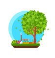 spring garden with flower and tree vector image