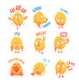 cute cartoon chickens characters with different vector image
