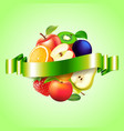 Fruits sphere with label background vector image