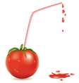 wet tomato and straw vector image vector image