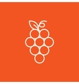 Bunch of grapes line icon vector image