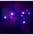 Leo Realistic Constellation Zodiac Sign vector image