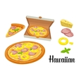 Whole pizza and slices of pizza Hawaiian in open vector image