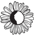 chamomille flower vector image vector image