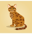 Bengal cat vector image